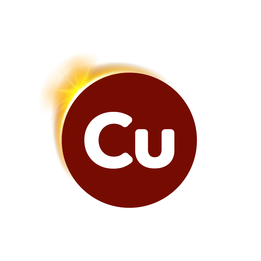 CuBER icon-04